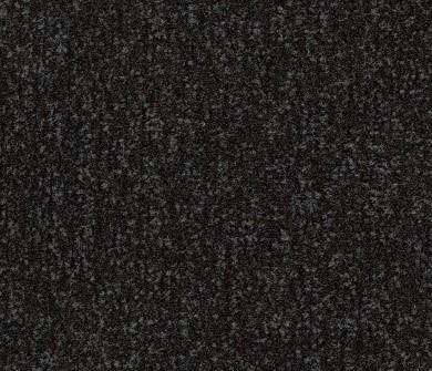Coral Classic FR - Raven Black